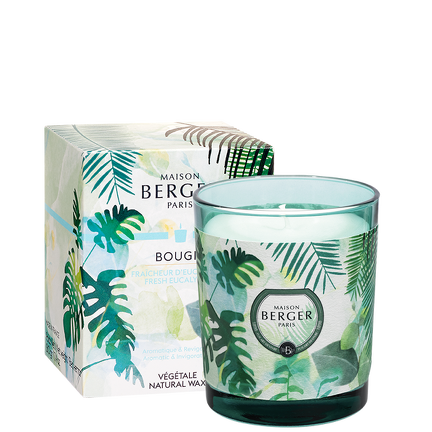 Bougie Pack Immersion Fraîcheur d'Eucalyptus